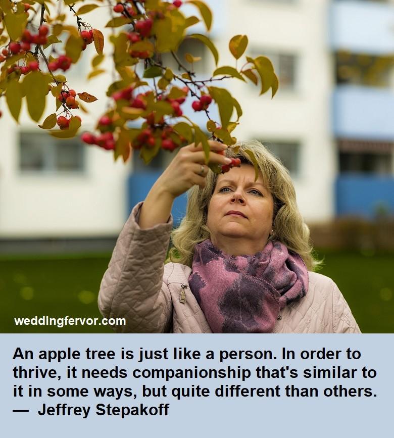 compnionship quote