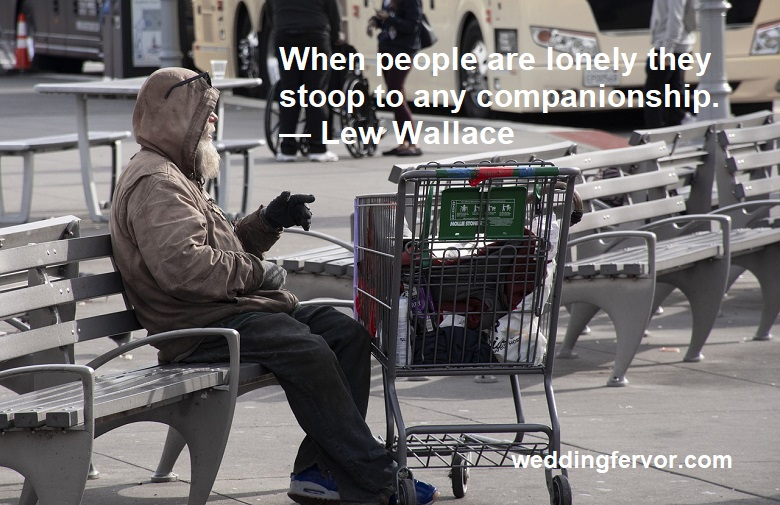 no companionship